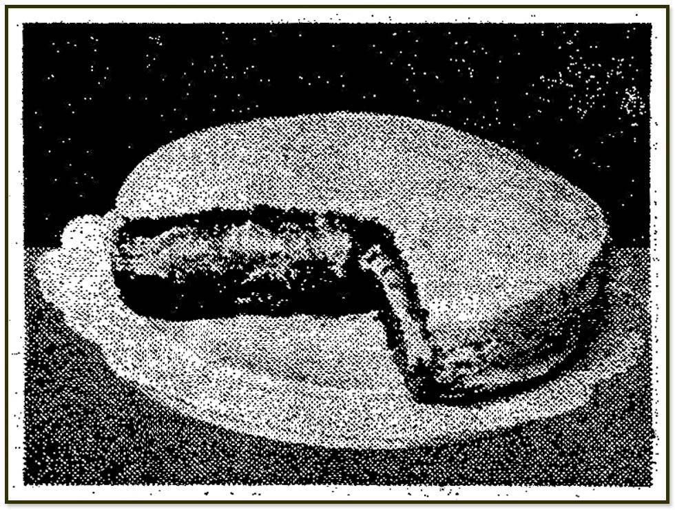 """Bild einer Kakaotorte aus """"Das kleine Frauenblatt"""", 13.3.1938"""
