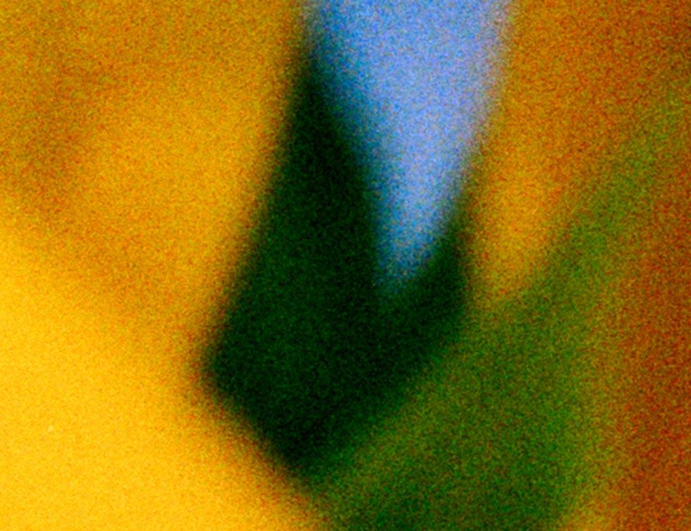 """Ausschnitt aus """"Sonnenblume 3"""""""