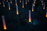 Lichtstelen auf der Baumgartner Höhe, Ausschnitt