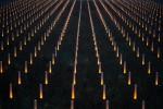 Lichtstelen auf der Baumgartner Höhe, Totale